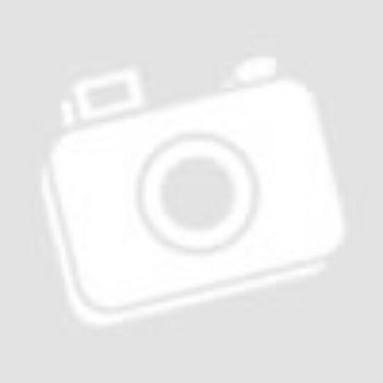 PowerPlus POWX300 Kandalló porszívó 1200W 20L kiállítási teszt gép